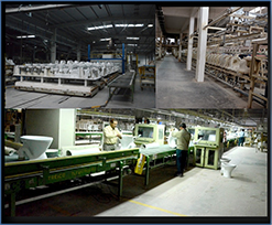 VITREOUS CHINA FACTORY DEWAS